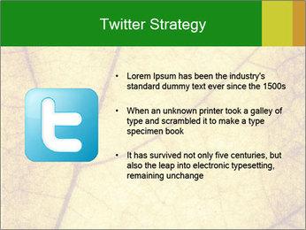 0000061645 PowerPoint Template - Slide 9