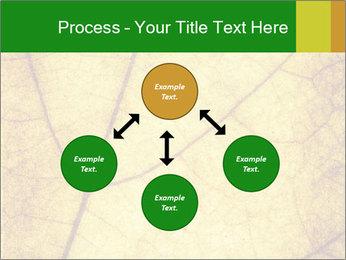 0000061645 PowerPoint Template - Slide 91