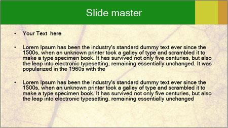 0000061645 PowerPoint Template - Slide 2