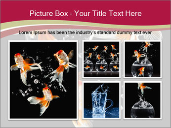 0000061650 PowerPoint Templates - Slide 19