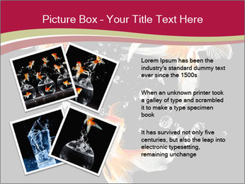 0000061650 PowerPoint Templates - Slide 23