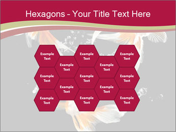 0000061650 PowerPoint Templates - Slide 44