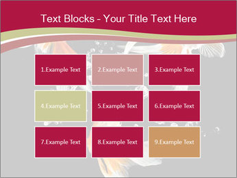 0000061650 PowerPoint Templates - Slide 68