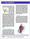 0000061654 Word Template - Page 3