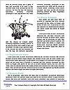 0000061654 Word Template - Page 4