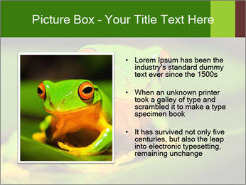 0000061662 PowerPoint Templates - Slide 13