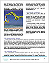 0000061665 Word Template - Page 4