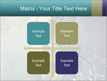 0000061668 PowerPoint Templates - Slide 37