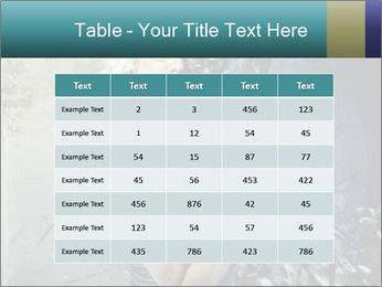 0000061668 PowerPoint Templates - Slide 55