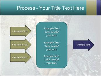 0000061668 PowerPoint Templates - Slide 85