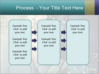 0000061668 PowerPoint Templates - Slide 86