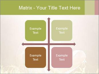 0000061670 PowerPoint Templates - Slide 37