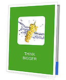 0000061671 Presentation Folder