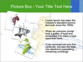 0000061671 PowerPoint Templates - Slide 17