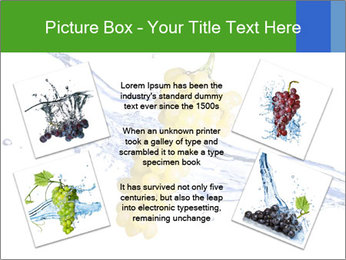 0000061671 PowerPoint Templates - Slide 24