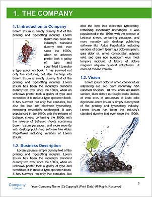 0000061671 Word Template - Page 3