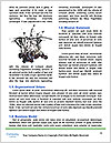 0000061671 Word Templates - Page 4