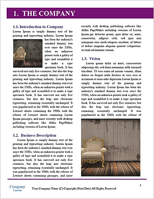 0000061677 Word Template - Page 3