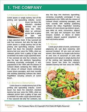 0000061683 Word Template - Page 3