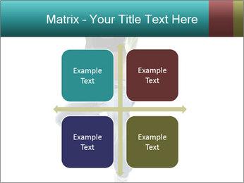 0000061686 PowerPoint Template - Slide 37