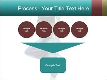 0000061686 PowerPoint Template - Slide 93