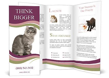0000061688 Brochure Template