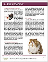 0000061688 Word Template - Page 3