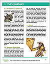 0000061699 Word Templates - Page 3