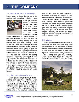 0000061700 Word Template - Page 3