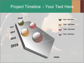 0000061706 PowerPoint Templates - Slide 26