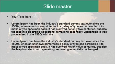 0000061706 PowerPoint Template - Slide 2