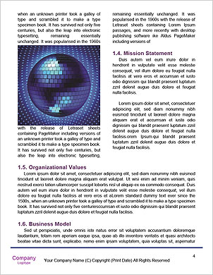 0000061709 Word Template - Page 4