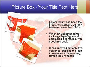 0000061733 PowerPoint Template - Slide 17