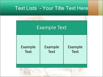 0000061734 PowerPoint Template - Slide 59