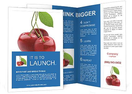 0000061738 Brochure Templates