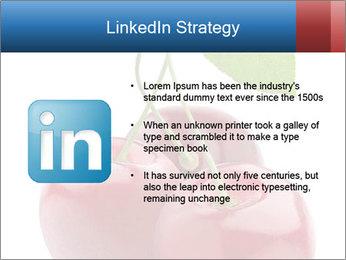 0000061738 PowerPoint Template - Slide 12