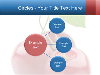 0000061738 PowerPoint Template - Slide 79