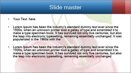 0000061738 PowerPoint Template - Slide 2