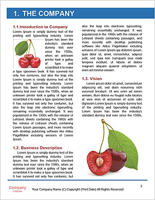 0000061738 Word Template - Page 3