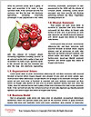 0000061738 Word Templates - Page 4