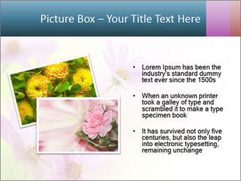0000061747 PowerPoint Templates - Slide 20