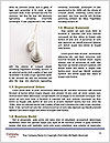0000061748 Word Template - Page 4