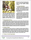 0000061751 Word Templates - Page 4