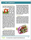 0000061752 Word Templates - Page 3