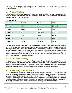 0000061756 Word Template - Page 9