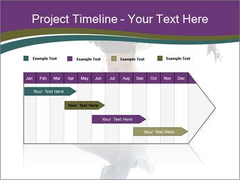 0000061764 PowerPoint Templates - Slide 25