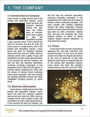 0000061766 Word Template - Page 3