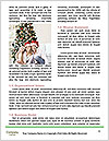 0000061768 Word Template - Page 4
