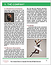 0000061796 Word Template - Page 3