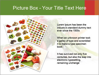 0000061803 PowerPoint Template - Slide 23